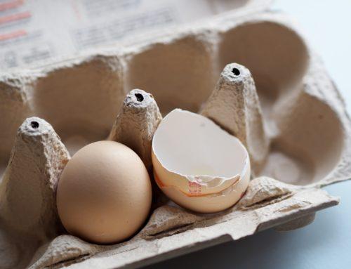 Le décret 3R et le regain d'intérêt pour les emballages à base de cellulose
