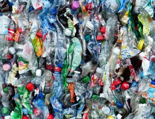 3R : la version finale du décret met l'accent sur la recherche de solutions de substitution à moindre impact environnemental